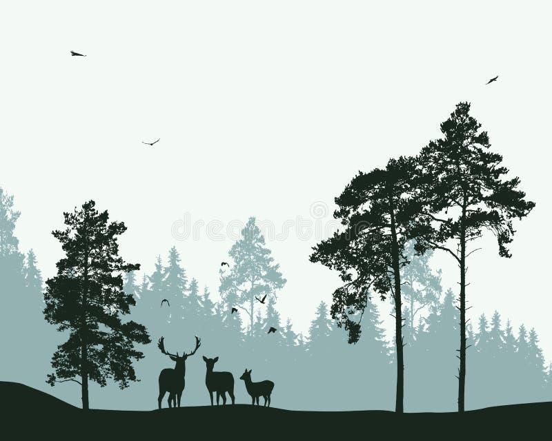 有鹿和飞鸟的森林 向量例证