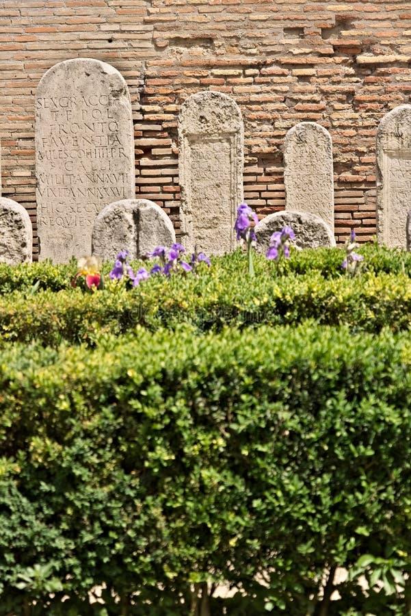 有黄杨木潜叶虫树篱和罗马墓碑的庭院在白色大理石 库存图片