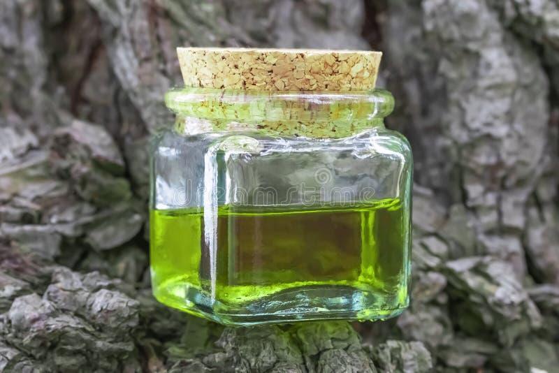有黄柏盖帽的玻璃瓶是半满的与绿色黄色油用花蜜 位于树枝 库存图片