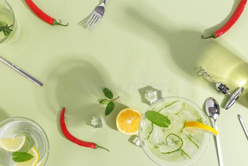 有黄瓜水、一个瓶和果子的玻璃觚在浅绿色的背景 Minimalistic创造性的概念 复制空间 免版税图库摄影