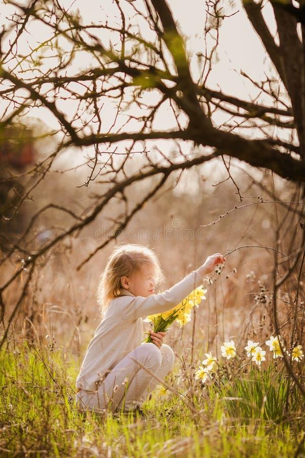 有黄色黄水仙的逗人喜爱的白肤金发的愉快的女孩在春天国家 免版税图库摄影