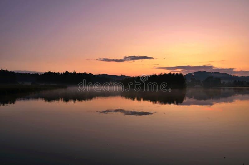 有黎明的池塘 免版税库存图片