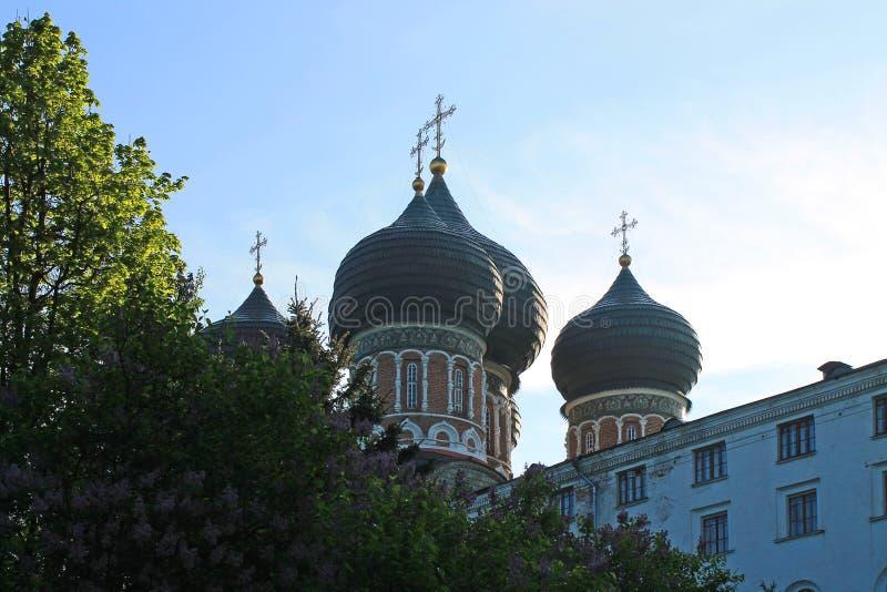 有黑圆顶的东正教在莫斯科俄罗斯Izmailovsky公园绿色春天树背景的  图库摄影