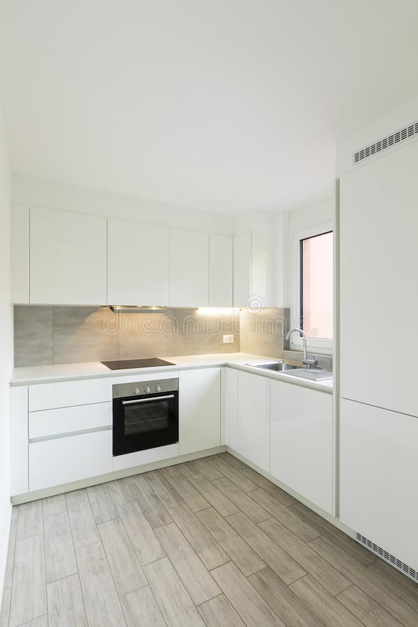 有黑烤箱和水槽的白色厨房 免版税库存图片