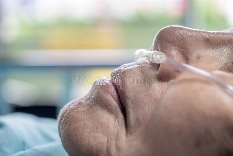 有鼻呼吸管的年长妇女 库存图片