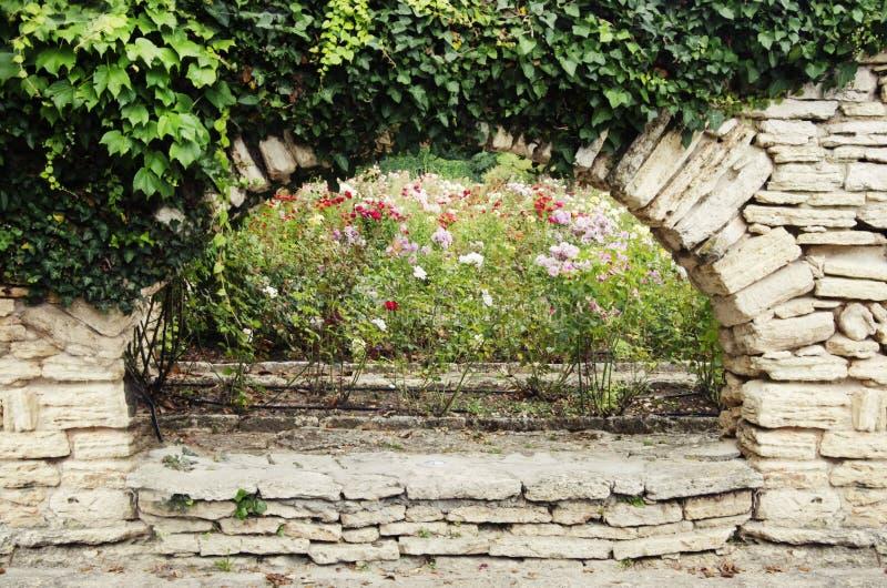 有绿叶的石墙 免版税库存照片