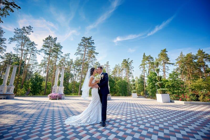 有他愉快的华美的新娘亲吻的典雅的时髦的新郎在公园 免版税库存照片