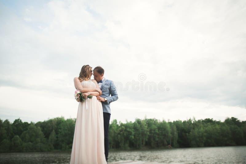 有他愉快的华美的深色的新娘的典雅的时髦的新郎湖的背景的 免版税库存图片