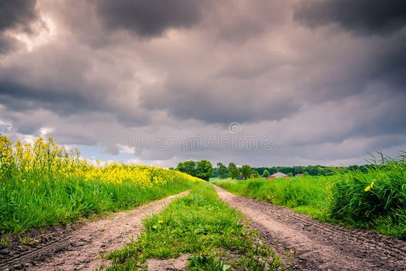 有黑暗的云彩的道路 免版税库存照片