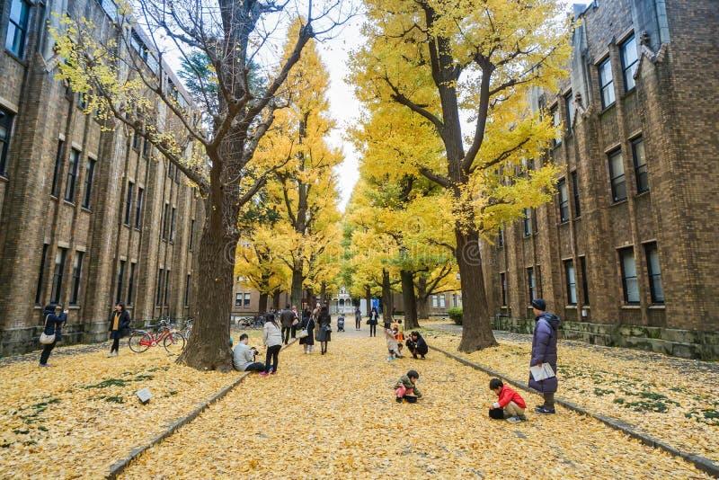 有他们的孩子的人们在看见银杏树树的东京大学在秋天晒干采取在日本 免版税库存照片