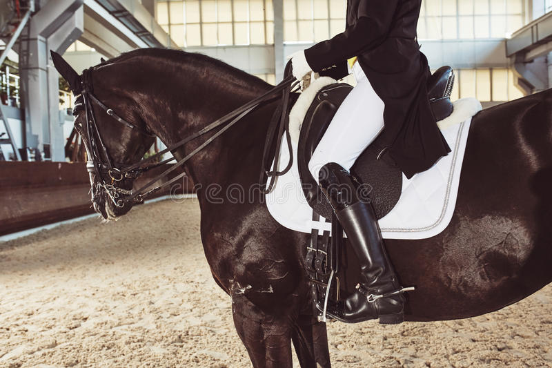 有他的马的妇女骑师 库存照片