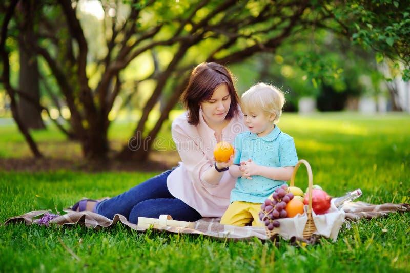 有他的年轻母亲的美丽的小男孩有野餐在夏天晴朗的公园 免版税库存图片