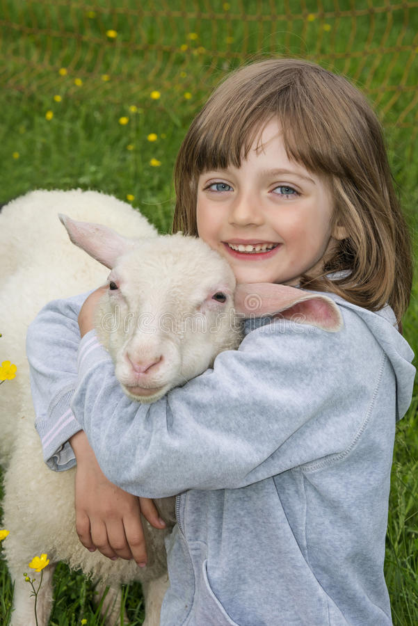 有绵羊的小女孩 图库摄影