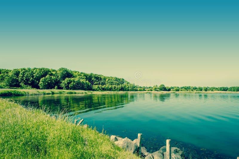 有绿色树的湖 库存照片