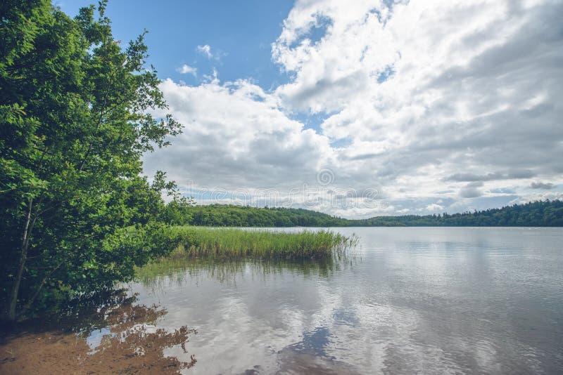 有绿色树的田园诗湖 库存图片