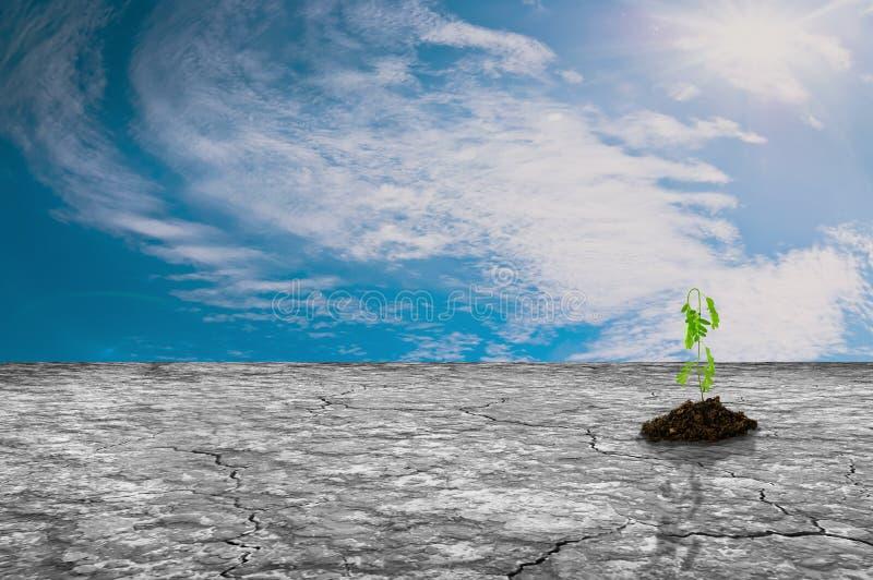 Download 有绿色植物生长和天空的干陆 库存例证. 插画 包括有 土壤, 本质, 气候, 工厂, 幼木, 例证, 背包 - 59112676