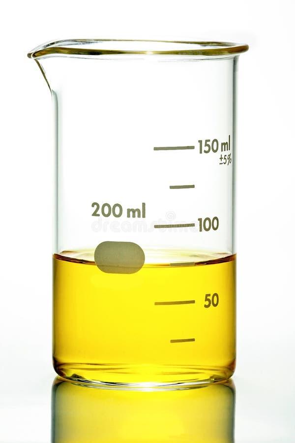 有黄色液体的烧杯在白色 免版税库存照片