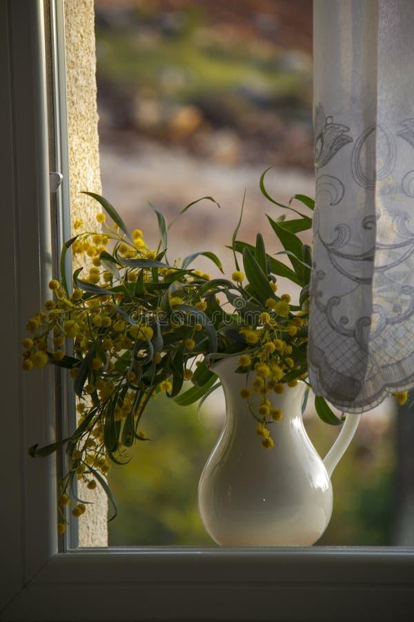 有黄色花的投手在窗口 免版税库存照片