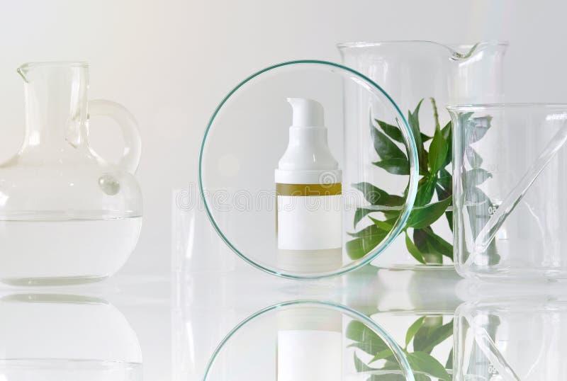 有绿色草本叶子和科学玻璃器皿的,在空白的标签包裹的焦点化妆瓶容器烙记的大模型的 库存图片
