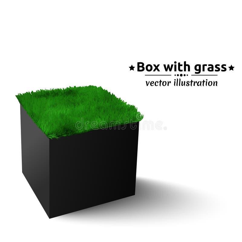 有绿草的黑匣子 库存例证
