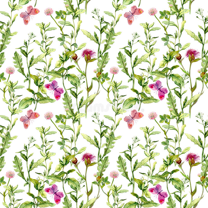 有蝴蝶、草本和花的草甸 无缝的水彩花卉样式 向量例证