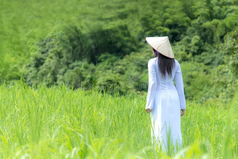 有Ao戴越南传统礼服的亚裔妇女打扮妇女走 免版税库存图片