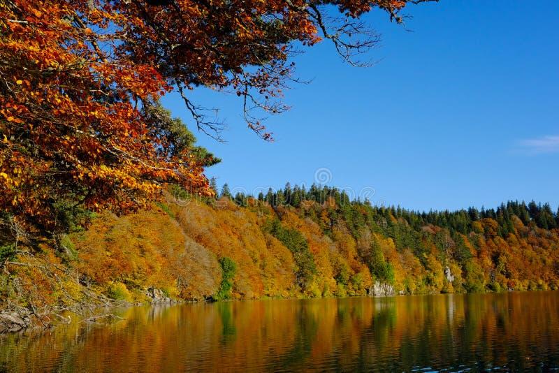 有Automn颜色的湖 库存图片