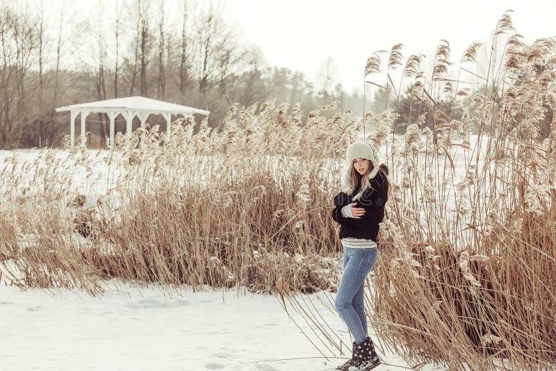 有blondie头发的年轻人相当可爱的白肤金发的女孩在冬天季节度过室外美好的时光 库存照片