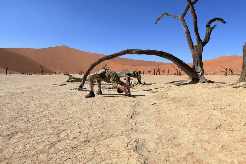 有Deadvlei和Sossusvlei的纳米比亚沙漠在纳米比亚 库存图片