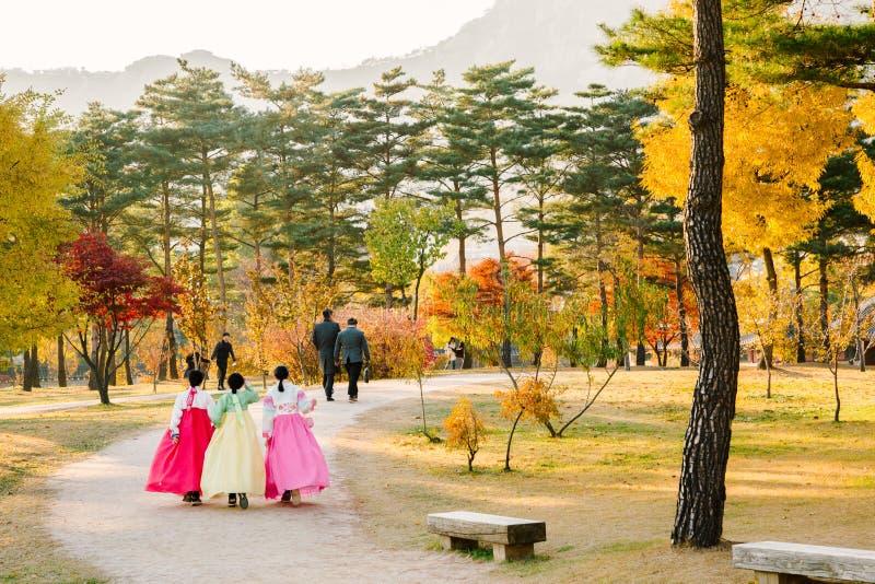 有Hanboktraditional韩国礼服和黄色秋天槭树叶子的女孩在景福宫宫殿 免版税库存照片