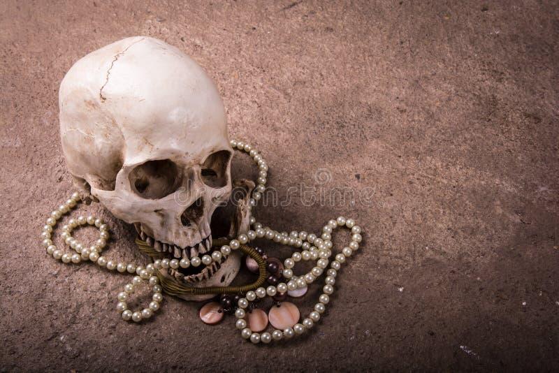 有jewellry的静物画头骨 库存图片
