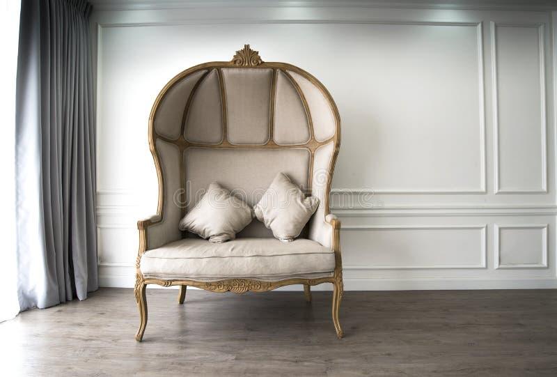 有luxurioius神色的布朗沙发 库存照片