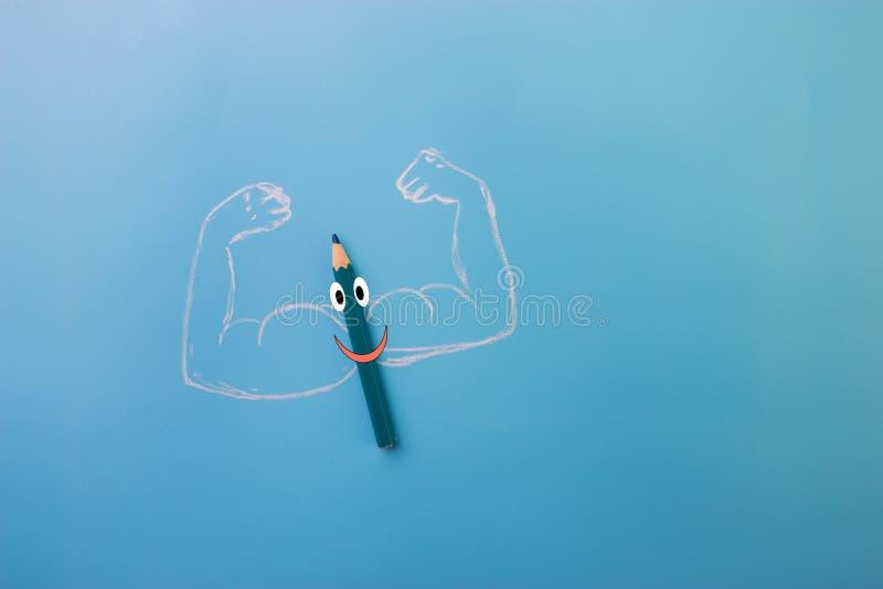 有musceles的颜色铅笔 库存图片