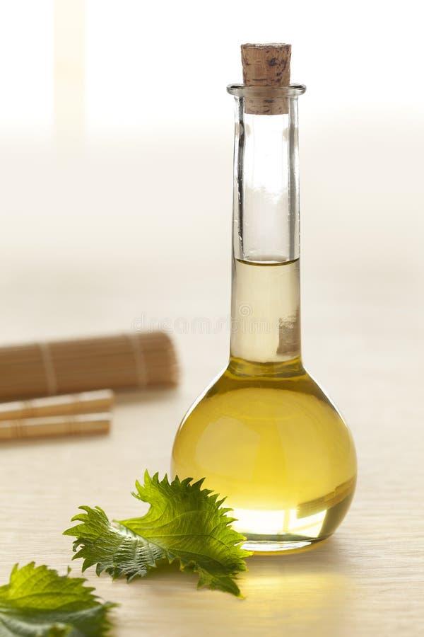 有shiso叶子油的瓶 库存图片