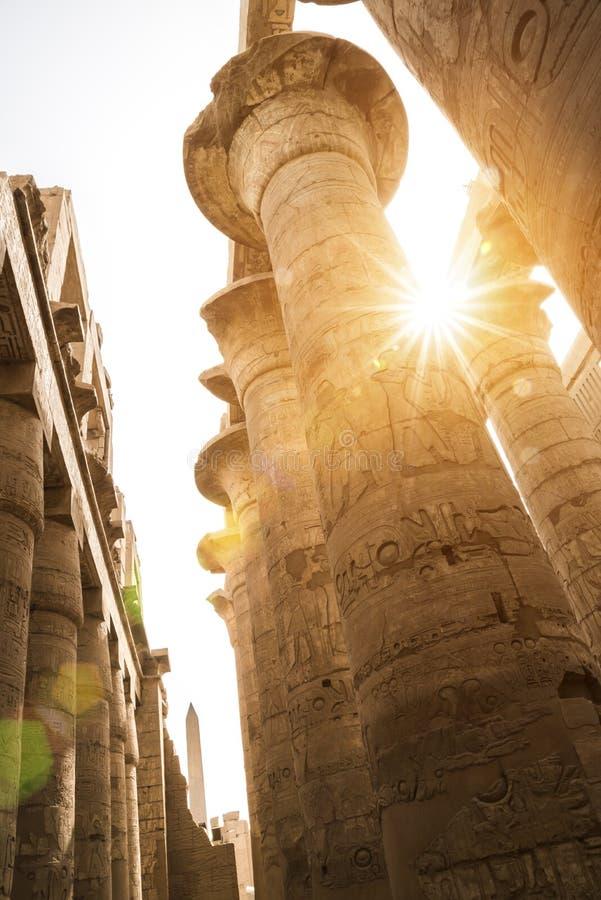 有sunflare的,卡尔纳克寺庙,埃及大厅 图库摄影