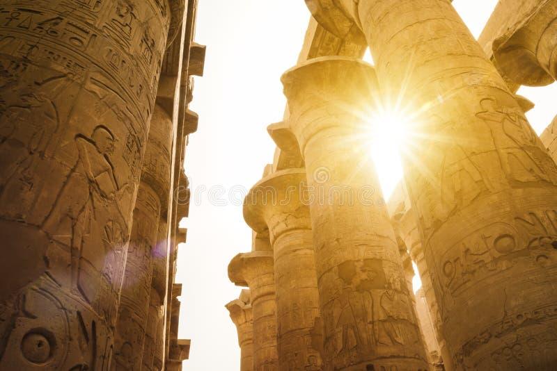 有sunflare的,卡尔纳克寺庙,埃及大厅 库存图片