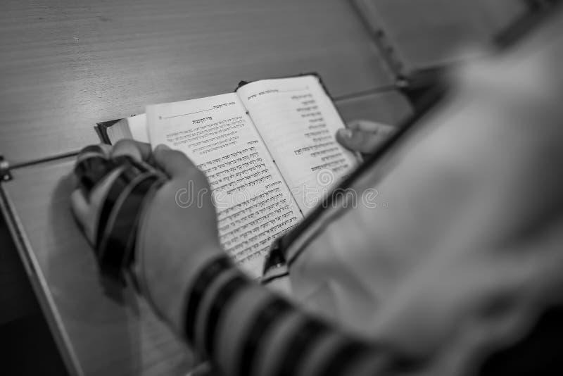 有Tefillin的犹太男孩在他的手在成人仪式的读的摩西五经上 免版税库存照片