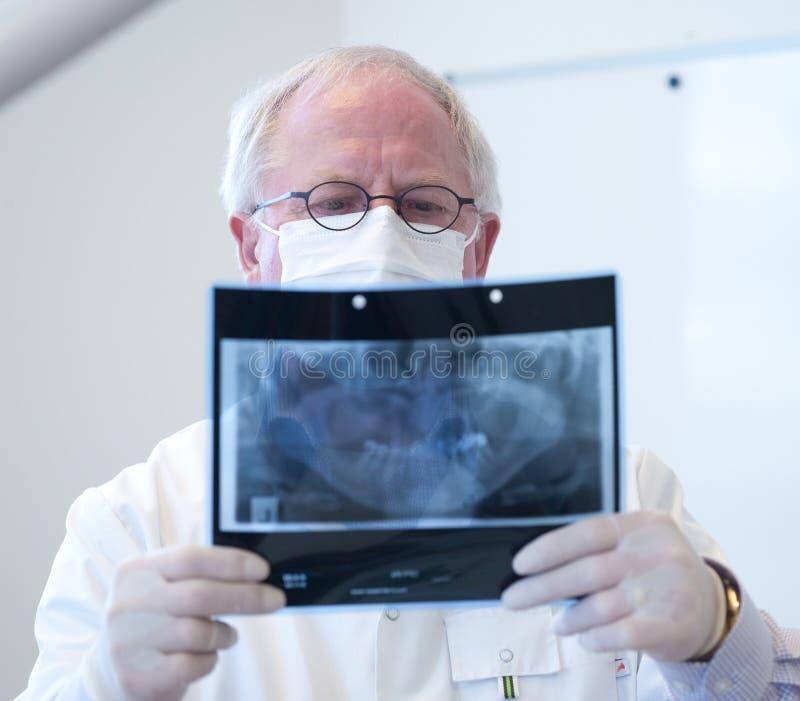 有X-射线的牙科医生在手中 免版税库存照片