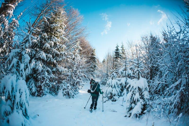 朋友在迁徙在山的冬天 免版税图库摄影