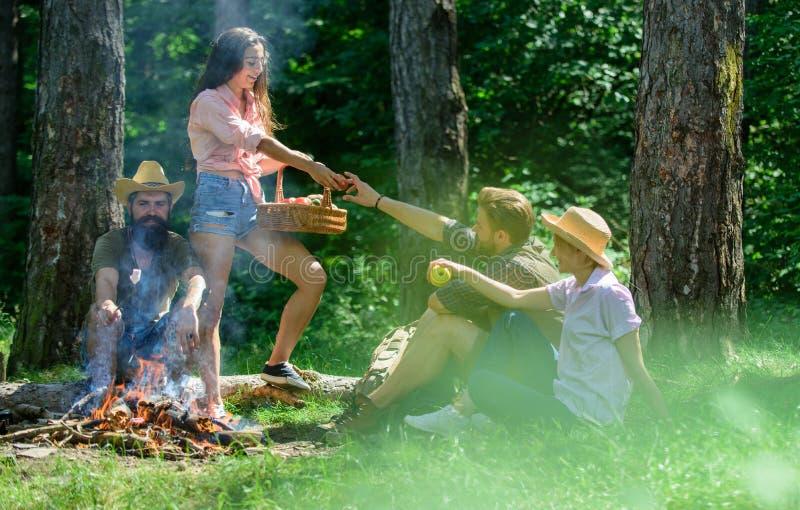 朋友松弛近的篝火 朋友享受假期或休闲自然森林背景 宜人的远足野餐  库存图片