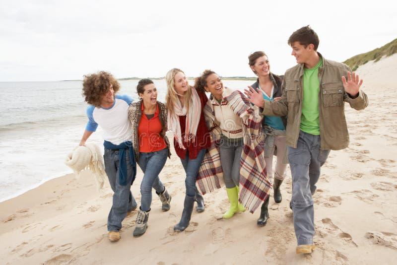 朋友组海岸线走的年轻人 免版税库存照片