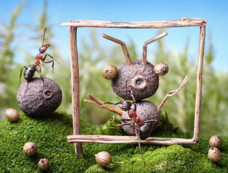 朋友,蚂蚁传说画象  免版税图库摄影