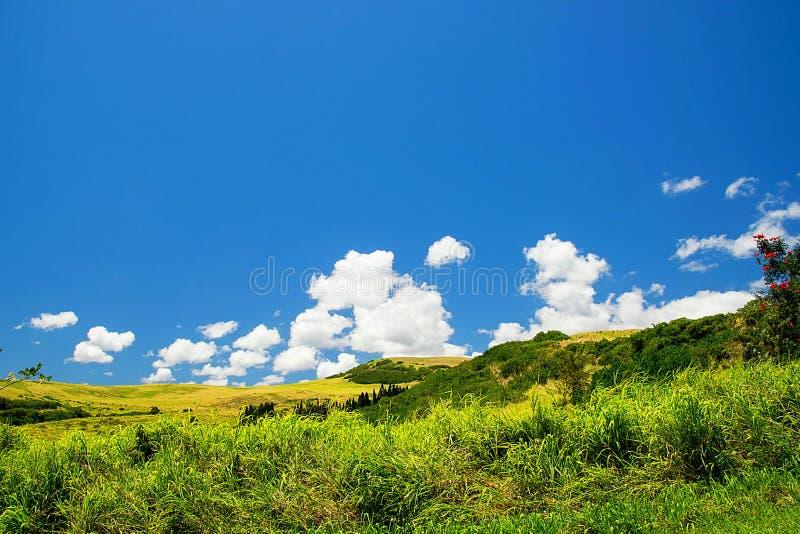 晴朗的夏威夷乡下 免版税库存照片