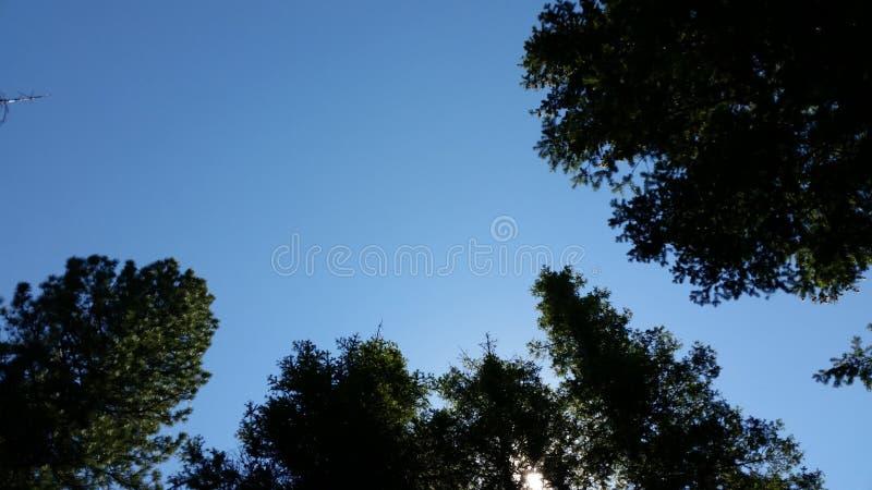 晴朗的天空 免版税库存照片