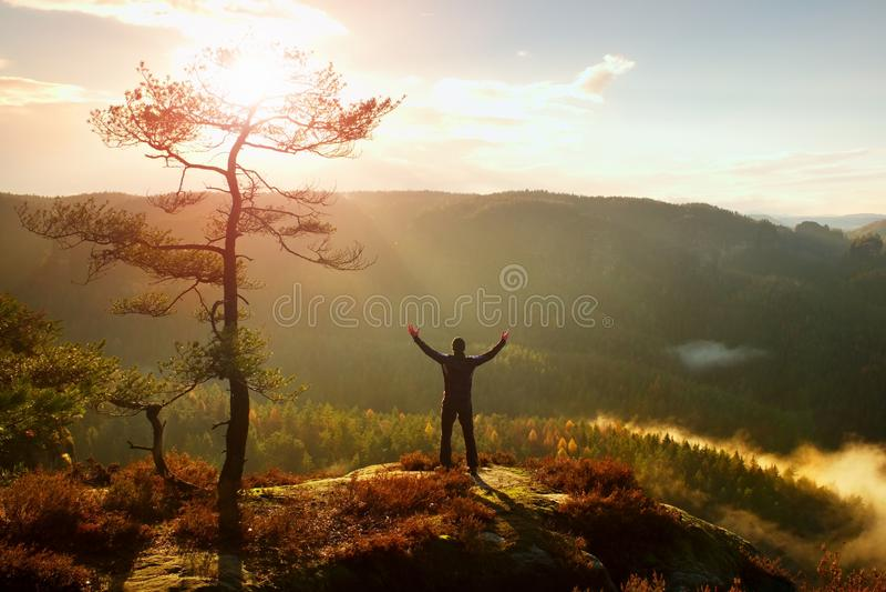 晴朗的早晨 愉快的远足者用在空气立场的手在岩石轰鸣声杉树 有薄雾和有雾的早晨谷 库存照片