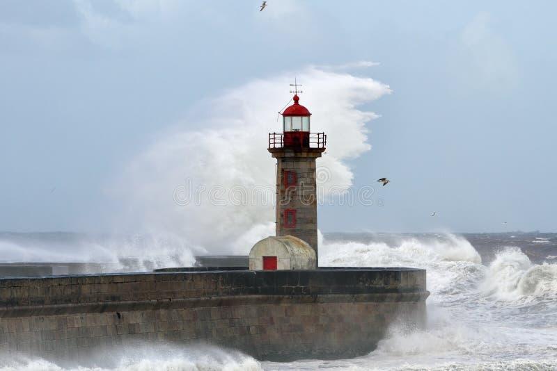 晴朗的风雨如磐的波浪 图库摄影