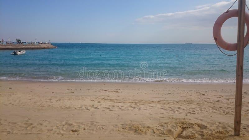 晴朗红海海滩的沙子 库存图片