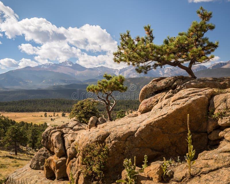 渴望高峰,足迹里奇路,洛矶山国家公园, CO 免版税库存图片