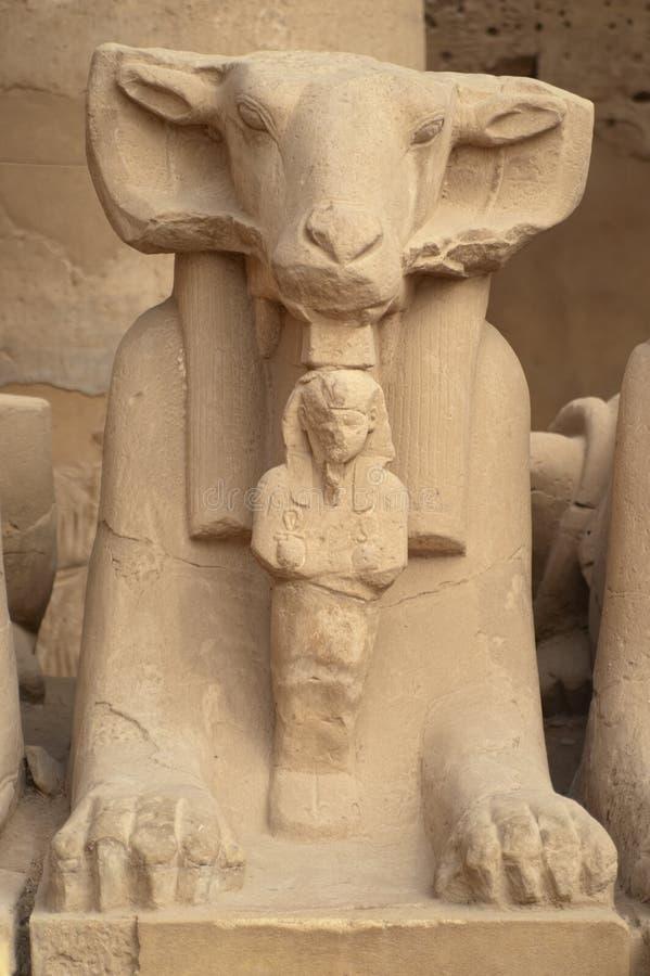 朝向的里面karnak公羊狮身人面象雕象寺 免版税库存照片