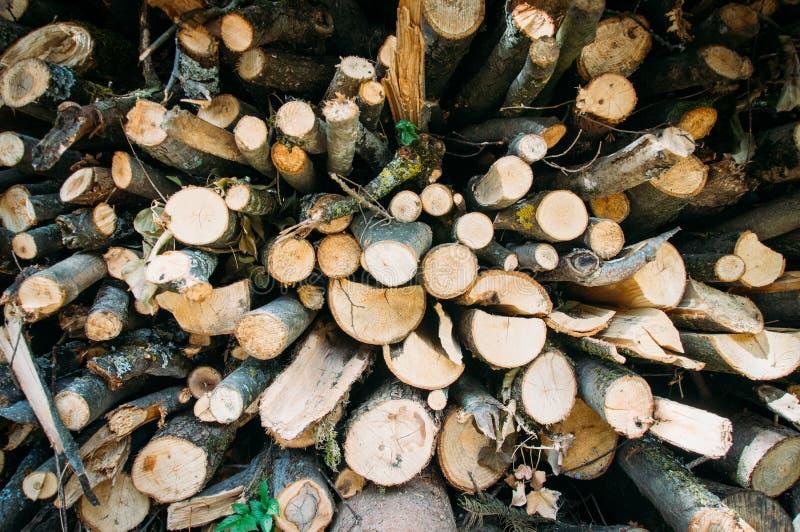 木为投入准备在火 免版税库存照片